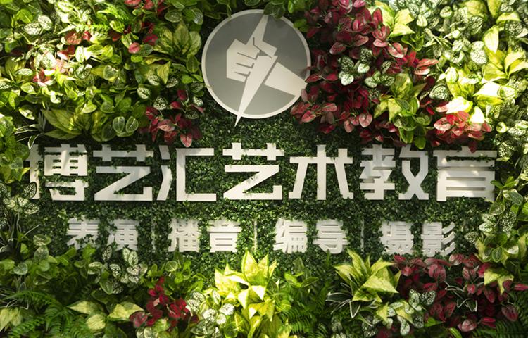 深圳市博艺汇文化艺术传播有限公司